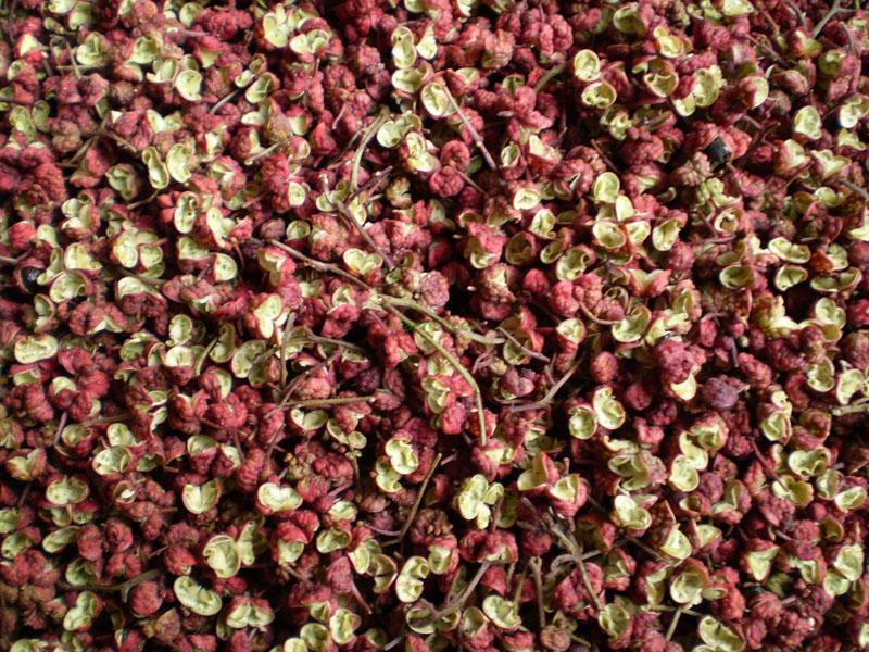Dried Chinese prickly ash