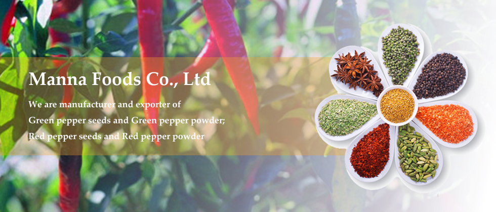 Banner- chili product