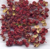 Chinese prickly ash dried
